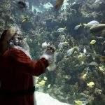 Santa at the deep in hull