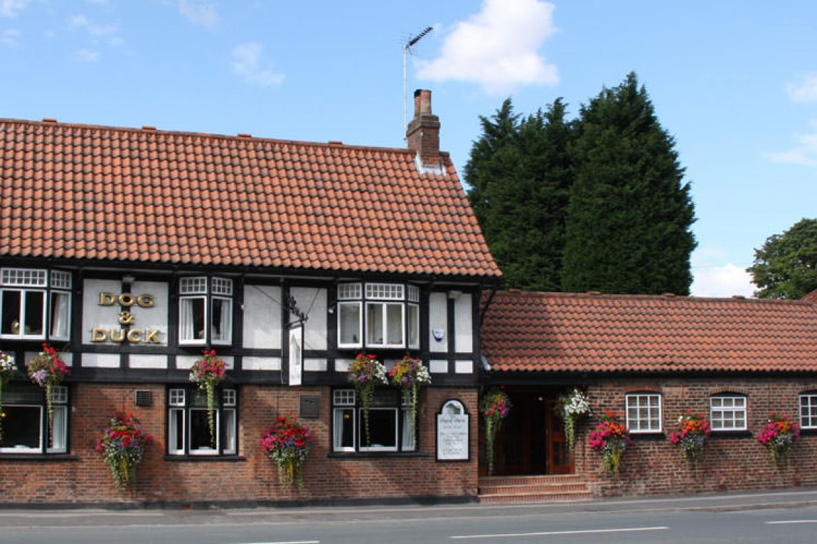 Dog and duck pub in the village
