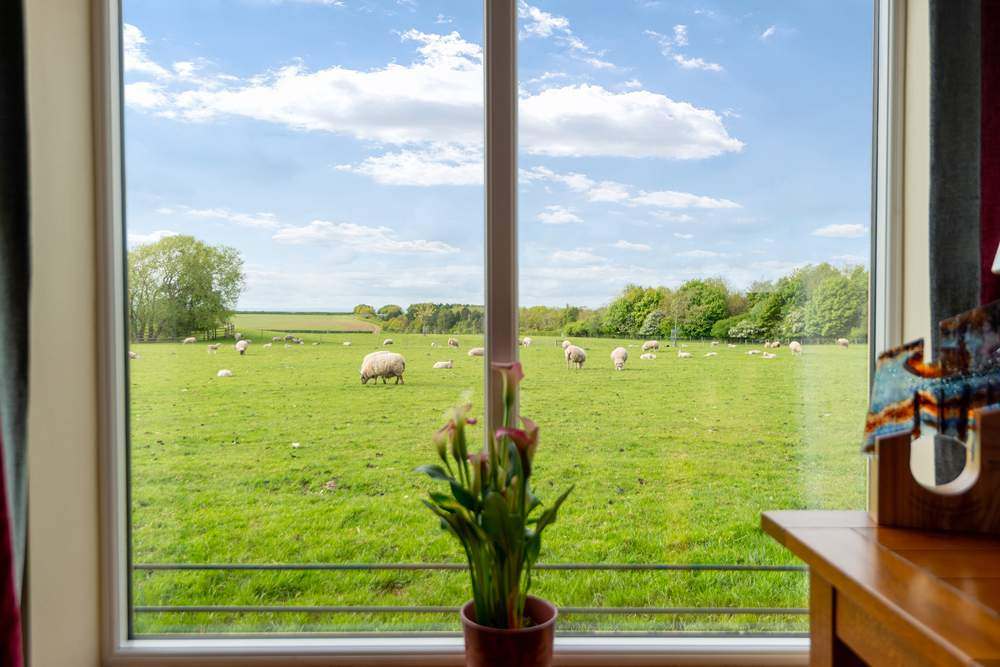 take in the view across the fields
