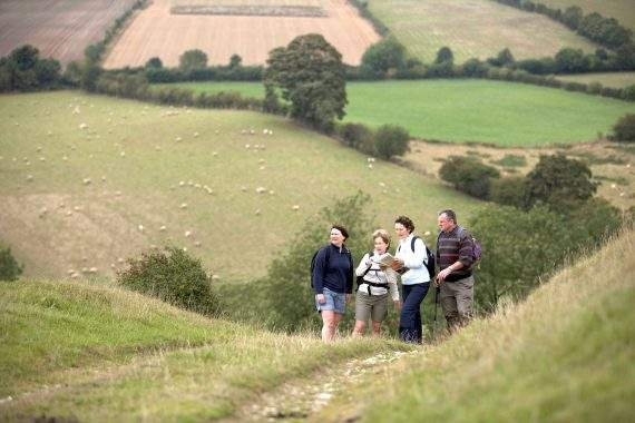 Walking in the yorkshire wolds VHEY