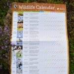 Wildlife calendar